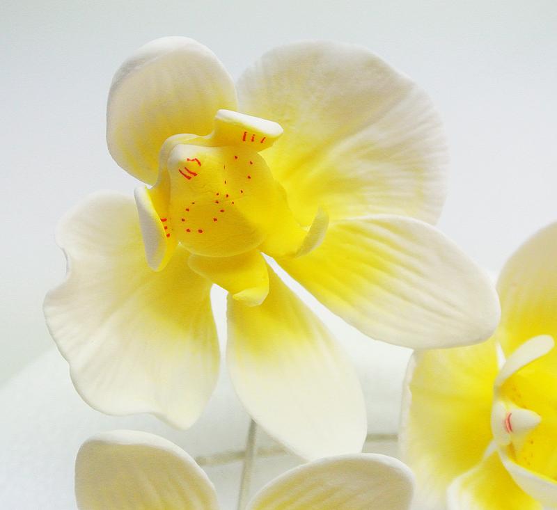 Orchidee aus Zucker 3-Set